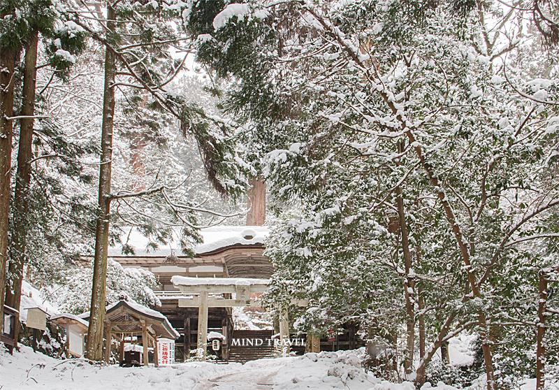 由岐神社 割拝殿 雪