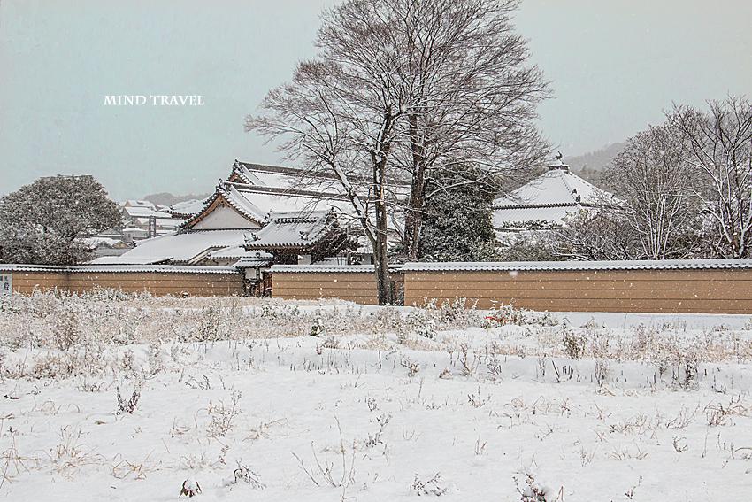 久修園院 雪3