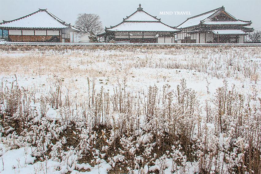 久修園院 雪2