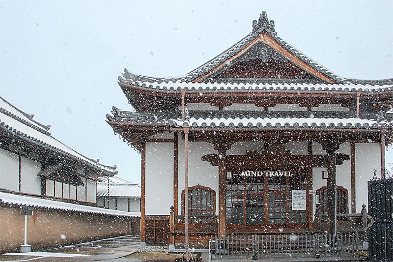久修園院 光明殿 雪