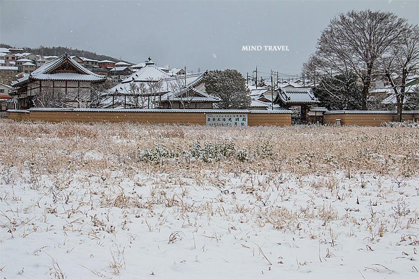 久修園院 雪4