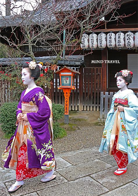 八坂神社 舞妓さん