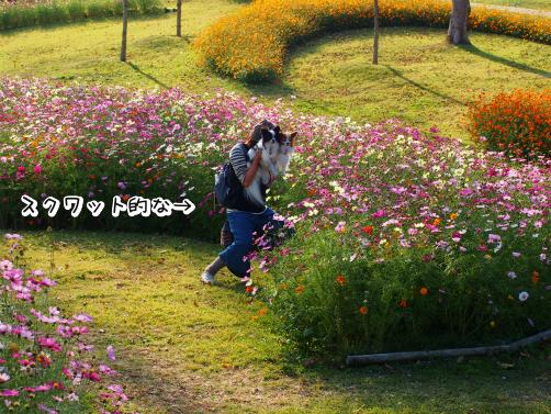 kXkjT5v_もじゃほら6