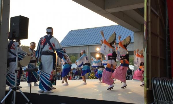 2016三木金物まつり 阿波踊り 遊舞連さんの構成