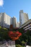 神戸市営住宅・ベルデ名谷