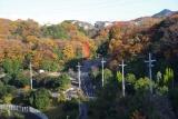 ベルデ名谷・裏山の彩色
