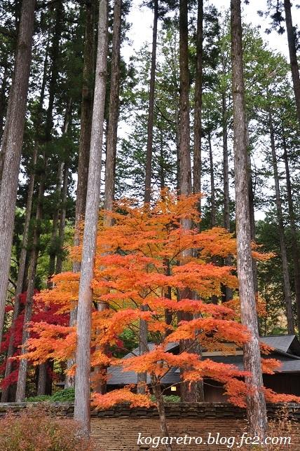 2016古峯園の紅葉2