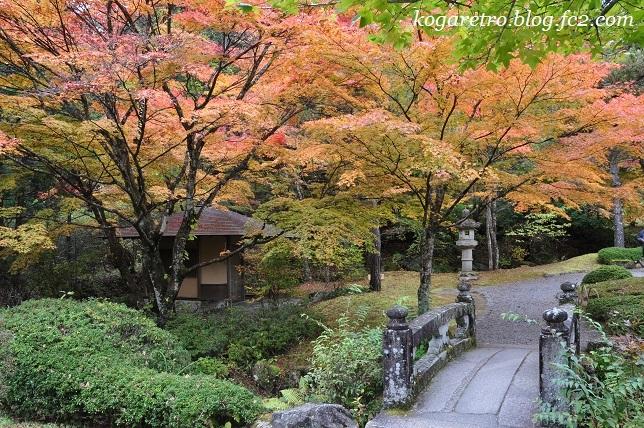 2016古峯園の紅葉4