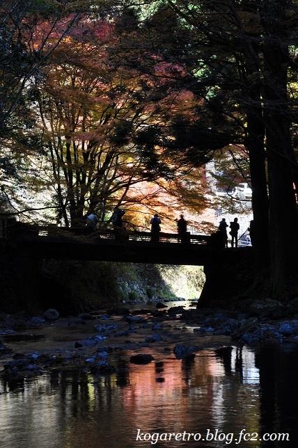 2016蓬莱山の紅葉3