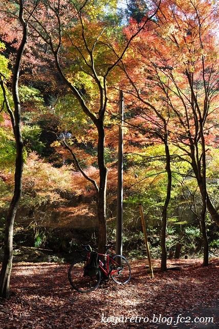 2016蓬莱山の紅葉6