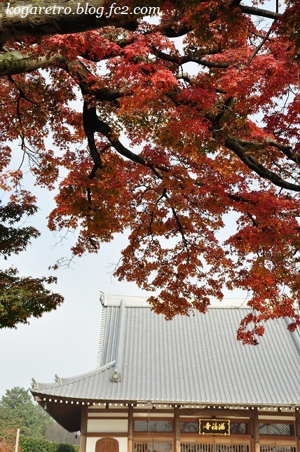 満福寺の紅葉