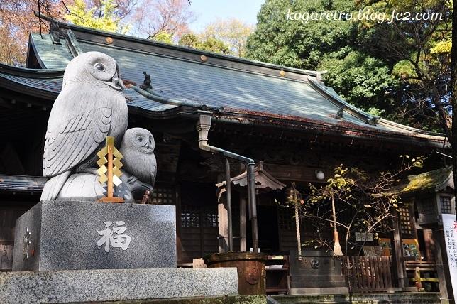 野木神社の大イチョウ4