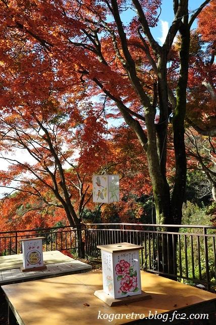 2016太平山の紅葉2