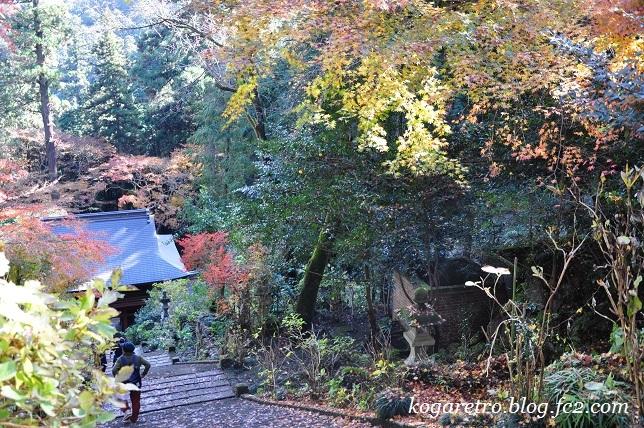 2016太平山の紅葉5