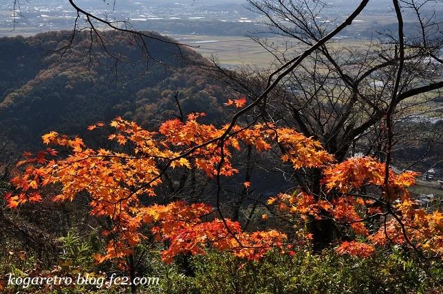 2016太平山の紅葉3