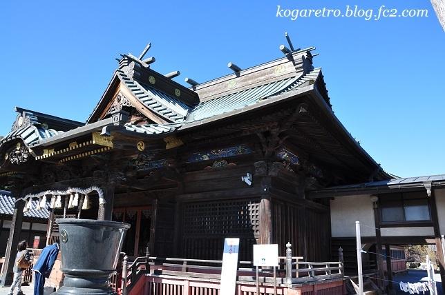板倉雷電神社で蝋梅