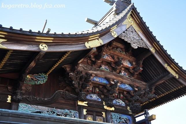 板倉雷電神社で蝋梅4