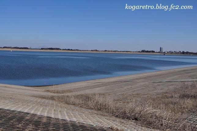 谷中湖は水位低下期