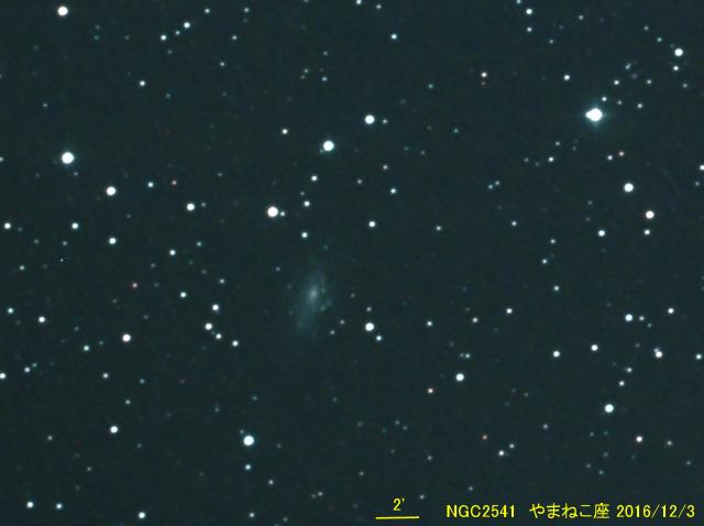 NGC2541_やまねこ座_20161203G_549565x14