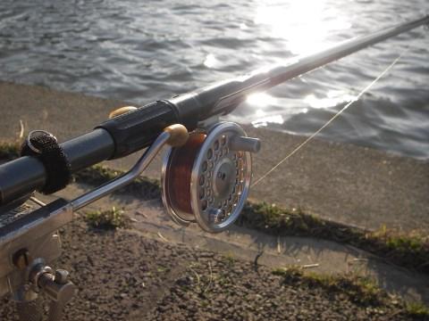 フライ5番ミャク釣り