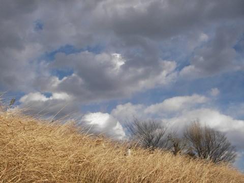 冬らしくない雲
