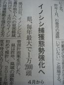 イノシシblog