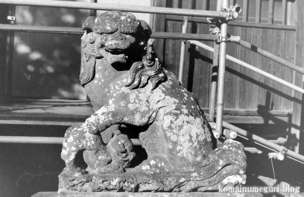 五社神社(南埼玉郡宮代町東)5