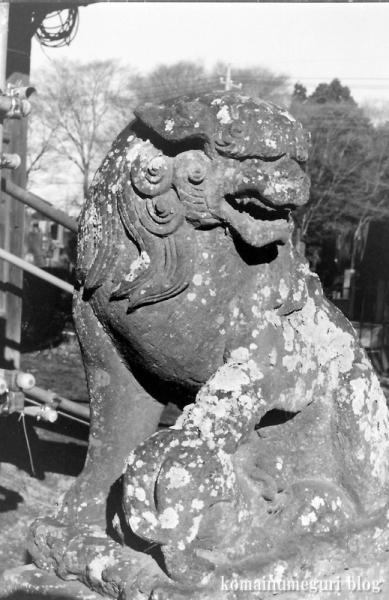 五社神社(南埼玉郡宮代町東)6