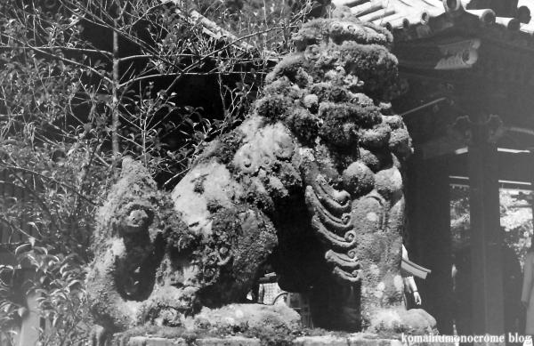 箱根神社(神奈川県足柄下郡箱根町元箱根)3