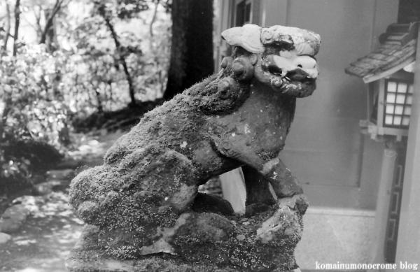 箱根神社(神奈川県足柄下郡箱根町元箱根)7