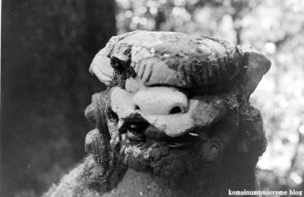 箱根神社(神奈川県足柄下郡箱根町元箱根)8