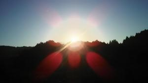 神社からの朝陽