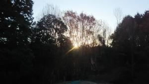 朝陽が射して来た