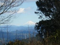 山頂から富士山が