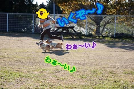 th_IMG_7984.jpg