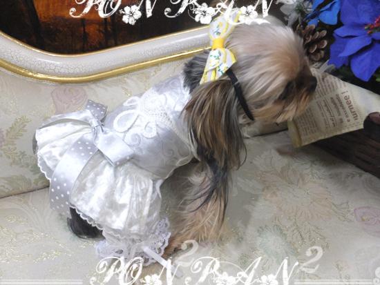 buro12_20161227052122294.jpg