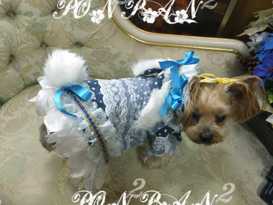 buro7_20161227052102fad.jpg