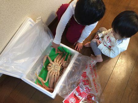 kani_161124_tottori.jpg