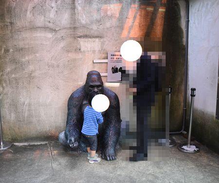 taipeizoo_012_gorilla_1601.jpg