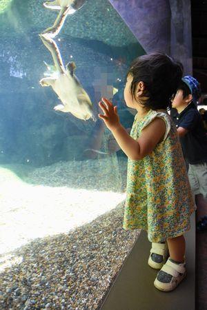 zoo_1701_002.jpg
