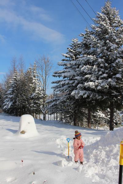 2017年北海道より新年のご挨拶