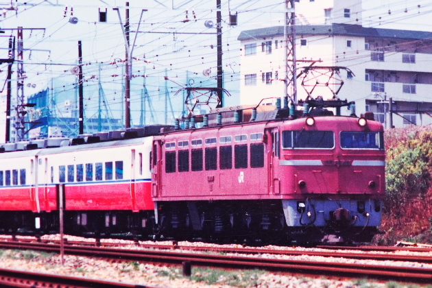 P3200356.jpg