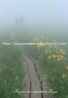 霧の向こうへ(小)