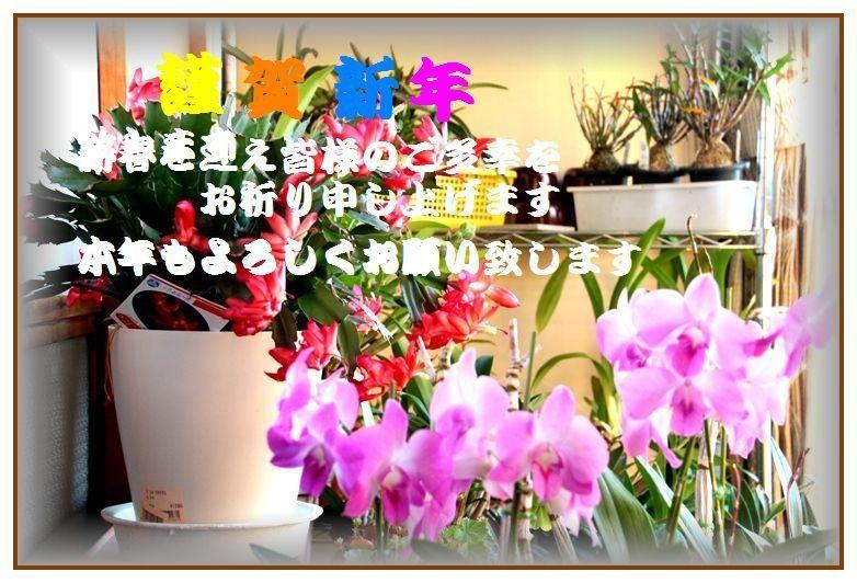 IMG_0936_R.jpg