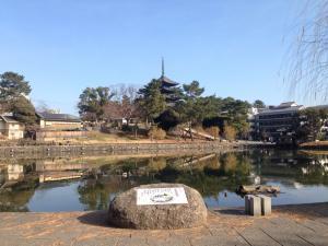 sarusawa0102_convert_20170102114657.jpg