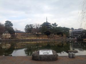 sarusawa0103_convert_20170103112217.jpg