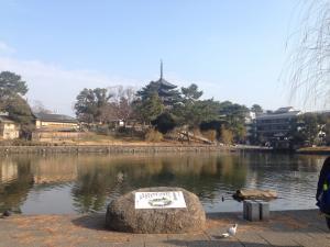 sarusawa0104_convert_20170104111417.jpg