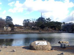 sarusawa0114_convert_20170114112045.jpg