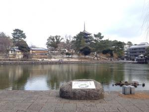 sarusawa0115_convert_20170115111147.jpg