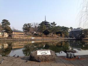 sarusawa0121_convert_20170121110939.jpg